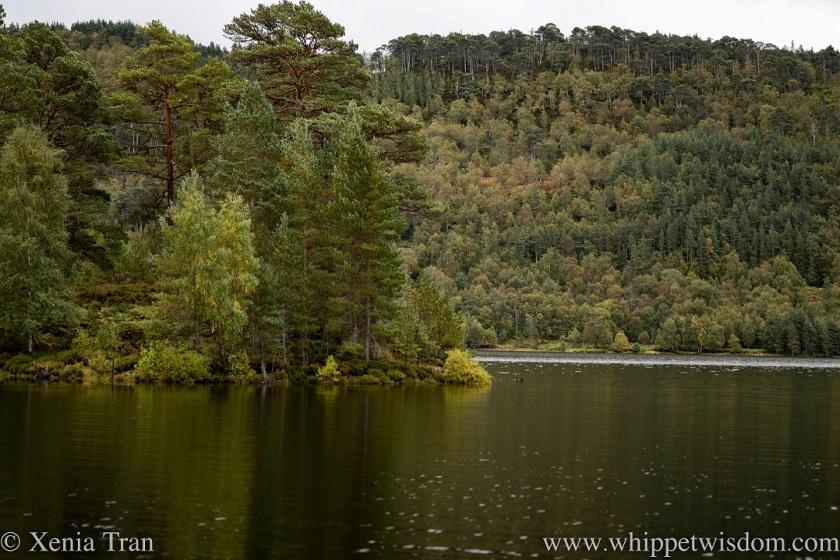 Loch Beinn a' Mheadhain in autumn